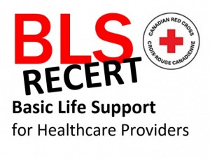 Basic Life Support (HCP) (Recertification)
