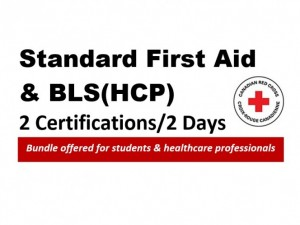 Standard First Aid and Level BLS(HCP) CPR/AED